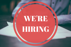 Saflec Systems is looking for a salesperson to join our team